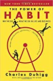 The Power of Habit: Why We Do What We Do in Life and Business Paperback 2015