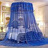 YZYN Moustiquaire de Luxe Grande Princesse Romantique Princesse Simple Porte Mosquito Net Literie Décor Rond Dôme Lit Canopy Netting pour Kid Girl Princess Lit Double (Color : Blue)