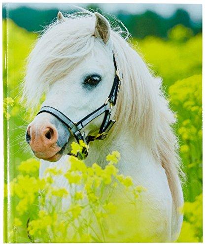 Pagna 20147-15 Poesiealbum kleines Pony 128S