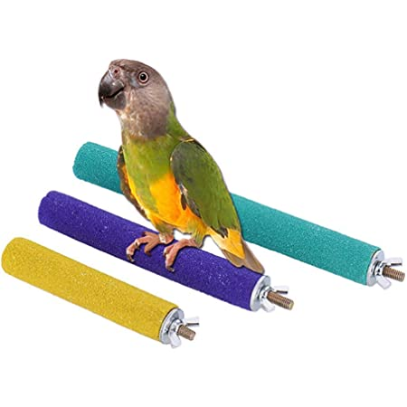 Colors may vary Conditions Birds Leg Muscles 9-Inch Penn Plax Cement Perch