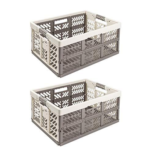 2X Stabile Profi Klappbox 45L - 54 x 37 x 28 cm - Einkaufskiste klappbar mit Soft-Griffe - Transportkiste stapelbar, Beige/Grau