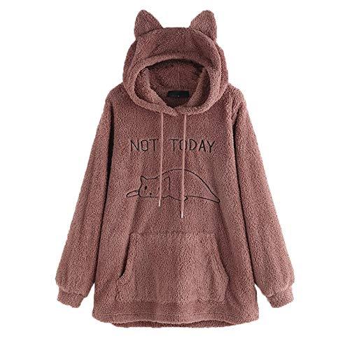 Suéter de Lana de Doble Cara para Mujer OtoñO e Invierno Jersey con Capucha Abrigo Suelto de Felpa Bordado de Manga Larga