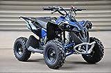 Renegade MBO 50cc gasolina Mini Quad Bike 2021 modelo Kids Quad Bike (azul)