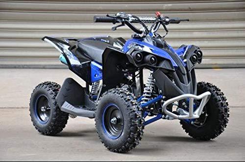 Renegade MBO Mini quad à essence 50 cc modèle 2021 pour enfant Bleu