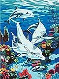 Pintura por números,Coral de delfines submarinos Decoración del hogar del artista de la pintura al óleo de la lona preimpresa de bricolaje Inicio 40x50cm (Rainbow Pony).