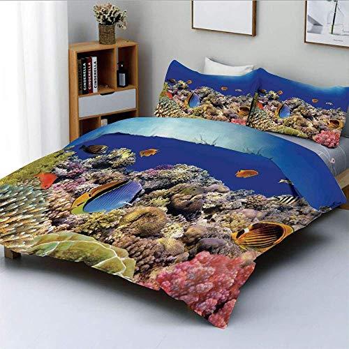 Juego de funda nórdica, Wild Sea Life, coloridos arrecifes de coral antiguos, peces exóticos, Bali, Indonesia, juego de cama decorativo de 3 piezas con 2 fundas de almohada, azul tostado y naranja, el