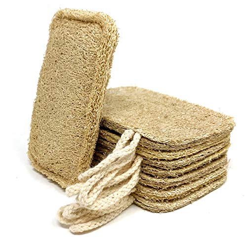 Esponja natural lavavajillas natural (paquete de 8) | estrop
