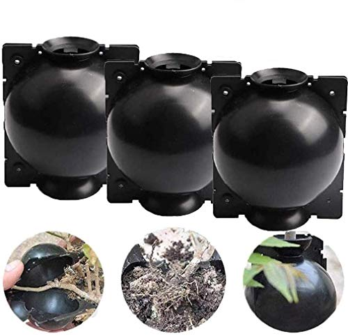 Plant Root Growing Box, Assisted Cutting Rooting, Reusable High Pressure...