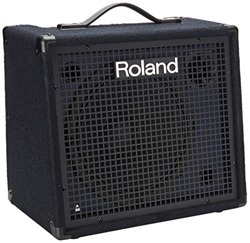 Roland KC-200 4 Channel Mixing Keyboard Amplifier, 100-Watt
