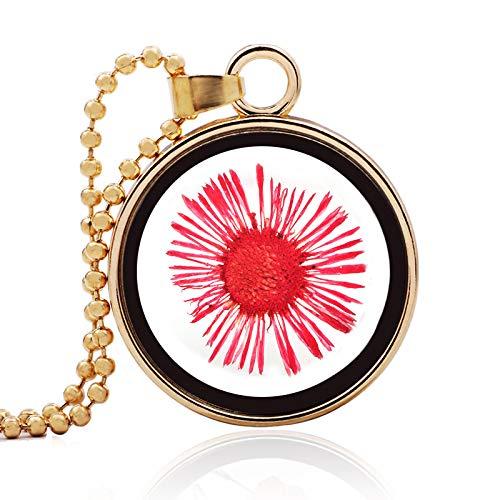 Mode rode zongedroogde bloem ketting ronde wens fles ketting hanger ketting lengte 60cm (hanger 2.8cm) gouden