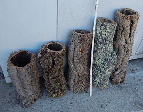 SAHAWA® Korkröhre ca.40 cm ,Korkrinde, Korkeiche, Terrarium
