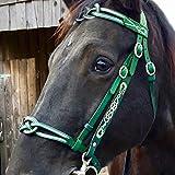 Arzja Staccabile Equitazione Halter Testa Collare in Pelle Resistente Metallo Briglia Redini Cinghia Regolabile Pratico Attrezzature Equestri,Verde