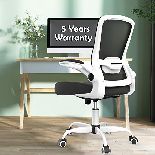 Office Chairs Clearance, Ergonomic Desk Chair with Adjustable Lumbar Support, Seat Height, High Back Mesh Computer Chair with Flip-up Armrests - 300lb Weight Capacity Task Chairs (White)