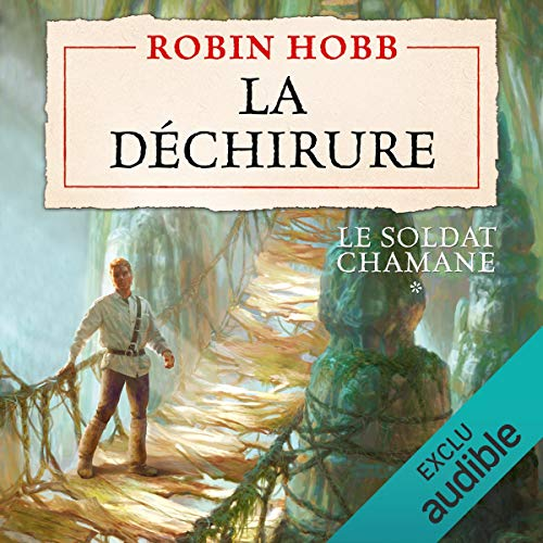 La déchirure audiobook cover art