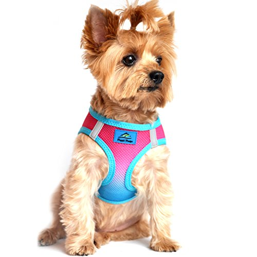 DOGGIE DESIGN American River Dog Harness Ombre Collection - Sugar Plum S