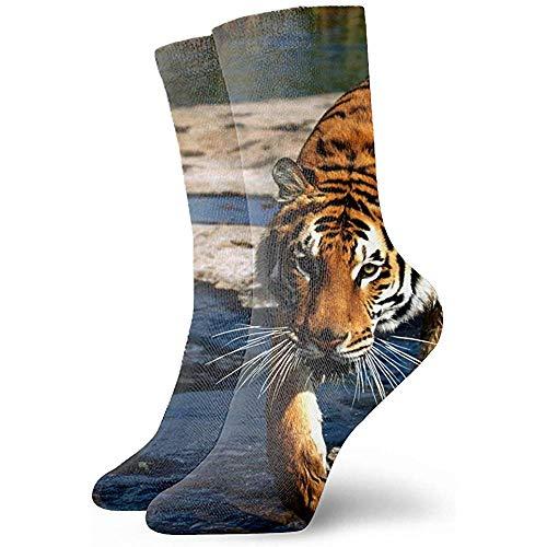 Dydan Tne Unisex 3D Natur Tiere Sebastiao Salgado Fotograf Socken Crazy Tube Lustige Neuheit Polyesterfaser Socken