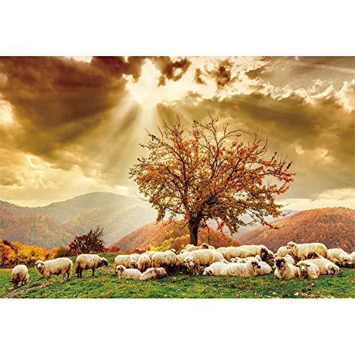 YongFoto 2,2x1,5m Paisajes Naturales Fondo Fantasía Dramático Sol Oveja En el césped Arce Colinas Fotografía Fondo Boda Fecha Amante De Viaje Foto Retrato Accesorios
