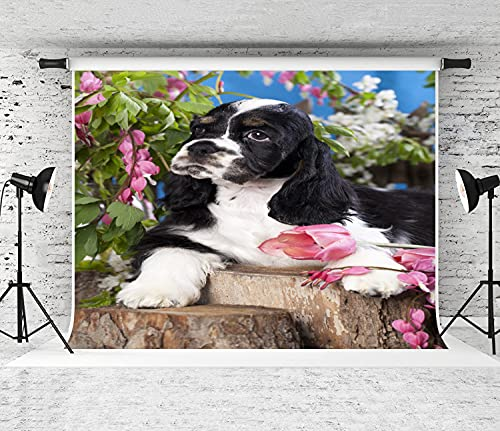 ZOANEN Photography Background,American Cocker Spaniel Dog,Party Decoration Banner Photo Booth Backdrop for Studio Props(10x7FT)
