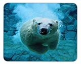 Polar Bears in The Water Mouse pad-Non-Slip Rubber Mousepad-Applies to Games,Home, School,Office Mouse pad