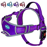 ThinkPet No Pull Halter Breathable Sport Harness - Escape Proof/Quick Fit Reflective Padded Dog Safety Vest with Handle Back/Front Clips, Easy for Medium Large Dog Walking Training, L Purple