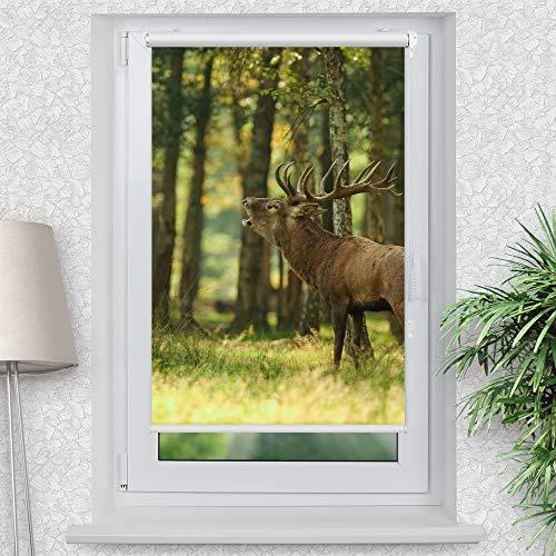 La-Melle » Rollo Motiv Hirsch im Wald | Verschiedene Größen | Klemmrollo ohne Bohren | auch für Wand- oder Deckenbefestigung, Größe: B 70 x H 120 cm