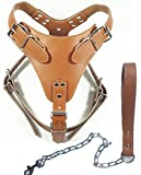 Dogs Kingdom 24'-32' Soft Leather Dog Harness&Leash Set Large for Pit Bull, Boxer, Bull Terrier