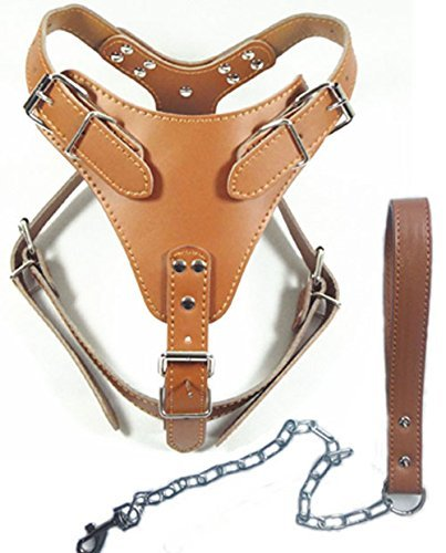 """Dogs Kingdom 24""""-32"""" Soft Leather Dog Harness&Leash Set Large for Pit Bull, Boxer, Bull Terrier"""