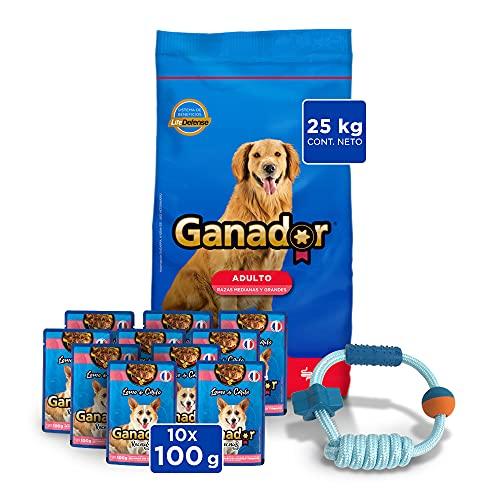 alimento campeon para cachorro fabricante Ganador