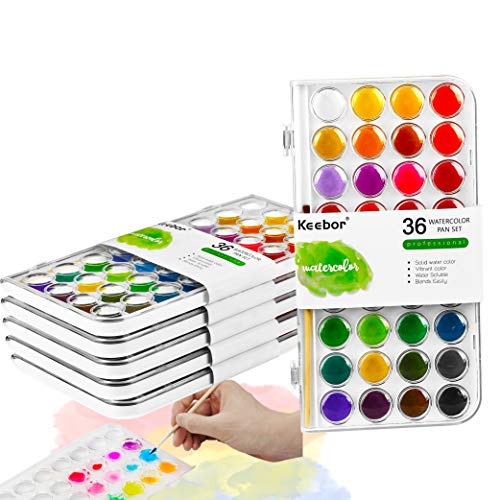 Keebor Basic 36-Colors Watercolor Paint Bulk Set of 6 with a Wood Paint Brush, Perfect for Kids, Adults, Beginners, Professionals