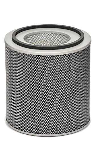 Find Discount Austin Air FR450B Healthmate Plus Standard Replacement Filter, White