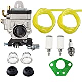 Hilom 300486 Carburetor with Repower Tune-Up Kit for Earthquake E43 E43CE E43WC Auger MC43 MC43E MC43CE MC43ECE MC43RCE Tiller MD43 WE43 WE43E WE43CE Edger