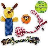 Golden Pets Hundespielzeug 4-teiliges Set I Ideal für kleine bis mittelgroße Hunde und Welpen I Aus natürlichen hochwertigen Baumwollfasern I + Gratis Pflegehandbuch