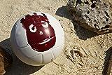 Zoom IMG-1 wilson palla da pallavolo castaway