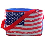 USA Flag Collapsible Insulated Cooler Tote Bag, 17 1/2 Inch