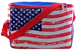 4th of July Party Supplies, USA Flag Collapsible Insulated Cooler Tote Bag, 17 1/2 Inch