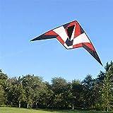 YF-SURINA Cometa al aire libre, cometa para niños Cometas hermosas para niños Fácil de volar para la playa al aire libre con barra de control y línea 30M fácil de transportar,Color