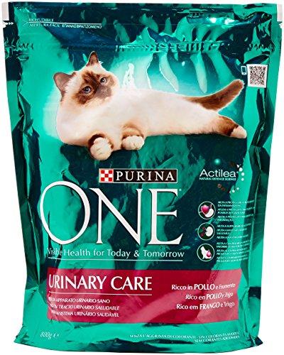 Purina One Bifensis Urinary Care Crocchette per il Gatto, Ricco in Pollo e Frumento, 800 g