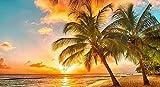 WFTD Puzzle de 1000 Puzzle Rompecabezas de Agencia de Viajes caribeña Fred Olson Juegos Infantiles Juguetes de Ejercicio Cerebral