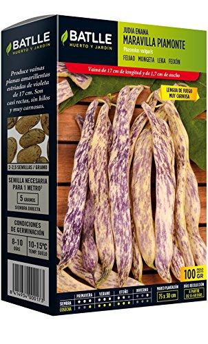 Batlle Graines de Légumes – Nain de Maravilla Piamonte (100 g)