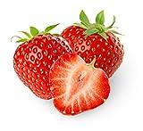 E-Aroma für E-Liquide I Erdbeer I 100 ml I Ohne Nikotin I Aromakonzentrat zum Mischen mit Basen I Herrlan - Made in Germany