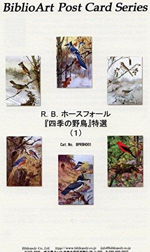 ねこの引出し☆R.B.ホースフォール 「四季の野鳥」特選(1)ジークレー印刷に拠るワンランク上の飾れるポストカードセット