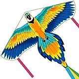 Fairwin Cometa Infantil para Niños, Diseño Grande y Simple Cometa Loro para Niños con una Cola Larga y Colorida, Adecuada para Juegos al Aire Libre y Actividades para Niños Niñas y Familias