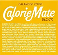 大塚製薬 カロリーメイト ブロック プレーン 4本×5個