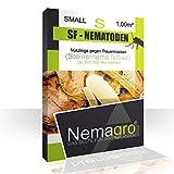 Nemagro® SF-Nematoden S 0.5mio - bis 1-2 Pflanzen - Für eine einfache Anwendung zu Hause!