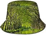 Unisex Naturaleza Flores Viajes Sombrero de Cubo Verano Gorra de Pescador Sombrero para el Sol-Naturaleza Paisaje Árboles Bosque Rama Hojas Francia Río Camino de Tierra Hierba