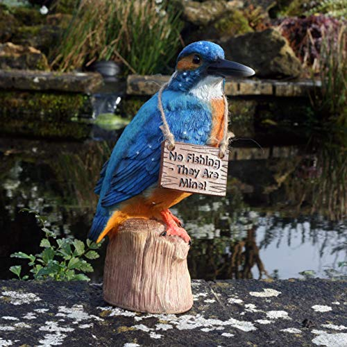Kayleigh the Kingfisher 25 cm Resin Garden Fishing/Pond Ornament …