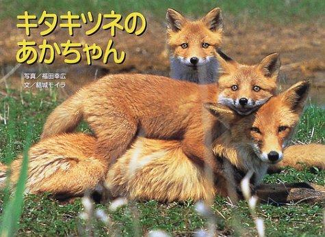 キタキツネのあかちゃん (親と子の写真絵本 3)の詳細を見る