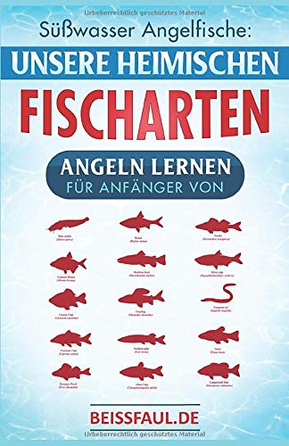 Süßwasser Angelfische: Unsere heimischen Fischarten Angeln lernen für Anfänger von Beissfaul