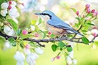 大人の子供のための1000ピースのジグソーパズル春の鳥すべてのピースはユニークで、ピースは完璧にフィットします