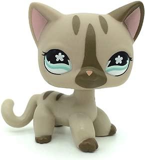 ZAD Littlest Pet Shop Gray Short Hair Cat Kitty Tan Blue Eyes LPS #468